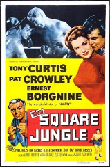 The Square Jungle 1955 DVD - Tony Curtis / Pat Crowley